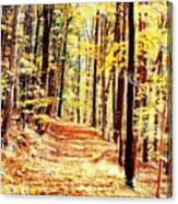 A Yellow Wood Canvas Print