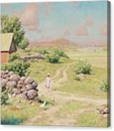 A Young Girl In Summer Landscape Canvas Print
