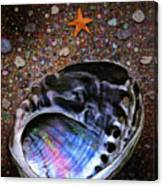 Abalone Canvas Print