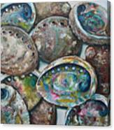 Abalone Shells Canvas Print