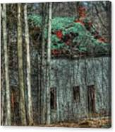 Abandoned In The Woods. Canvas Print