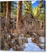 Abandoned Sprague Cabin Canvas Print