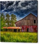 Abandoned Through The Reeds Canvas Print