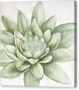 Abhi13 Canvas Print