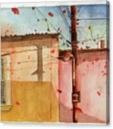 Abi18 Canvas Print