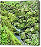 Above Moine Creek 2 Canvas Print