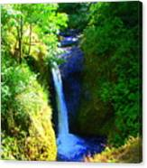 Above Onionta Falls Canvas Print