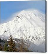 Above The Tree Line Canvas Print
