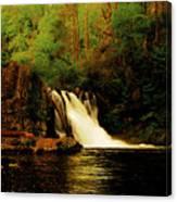 Abrams Falls Canvas Print