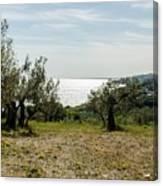 Abruzzo - An Italian Landscape  Canvas Print