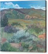 Absoraka Canvas Print