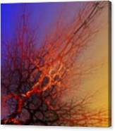 Abstract 112810a Canvas Print
