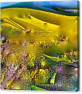 Abstract 13 Canvas Print