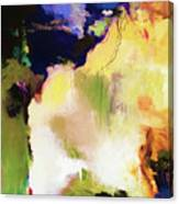 Abstract #36 Canvas Print