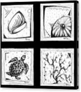 Abstract Art Contemporary Coastal Sea Shell Sketch Collection By Madart Canvas Print