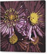 Abstract Aster Flowers Canvas Print