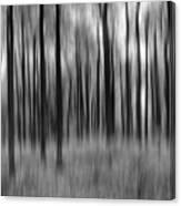Abstract Autumn Bw Canvas Print