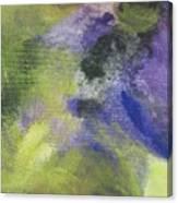 Abstract Close Up 1 Canvas Print