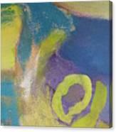 Abstract Close Up 4 Canvas Print