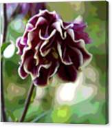 Abstract Columbine Canvas Print