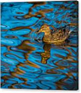 Abstract Duck Canvas Print