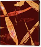 Abstract Feathers Falling On Brown Background Canvas Print