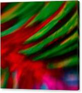 Abstract Frolic Canvas Print