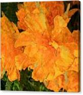 Abstract Motif By Yellow Daffodils Canvas Print