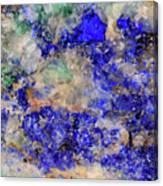 Abstract No 4 Canvas Print