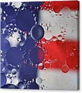 Abstract Oil And Water Usa 2 Canvas Print