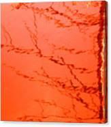 Abstract Orange Canvas Print