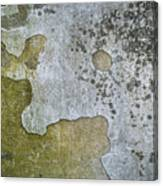 Abstract Pattern On The Wall Canvas Print
