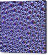 Abstract Purple Alien Bubble Skin Canvas Print