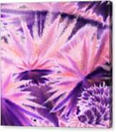 Abstract Purple Flowers Canvas Print