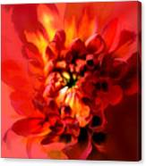 Abstract Red Chrysanthemum Canvas Print