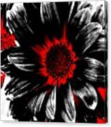 Abstract Red White And Black Daisy Canvas Print