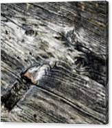 Abstract Shapes On An Old Weathered Wooden Board Canvas Print