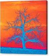 Abstract Single Tree Blue-orange Canvas Print