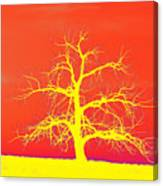 Abstract Single Tree Yellow-orange Canvas Print