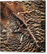 Abstract Surface Bumpy Stone Canvas Print