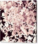 Abstract Tree Landscape Dark Botanical Art Rose Tinted Canvas Print