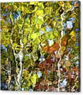 Abstract Tree Reflection Canvas Print