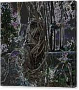 Abstract Twisted Tree Canvas Print