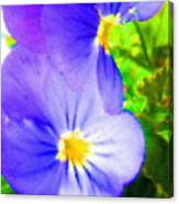 Abstract Violets Canvas Print