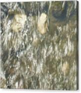 Abstract Water Art V Canvas Print