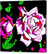 Abstract White Red And Pink Roses Canvas Print