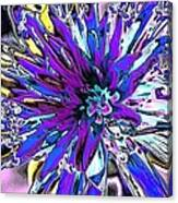 Abstract Wildflower 9 Canvas Print