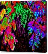 Abstract Wisteria Canvas Print