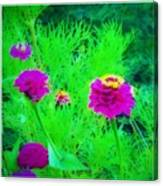Abstract Zinnias In Green And Pink Canvas Print