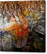Abstraction 3416 Canvas Print